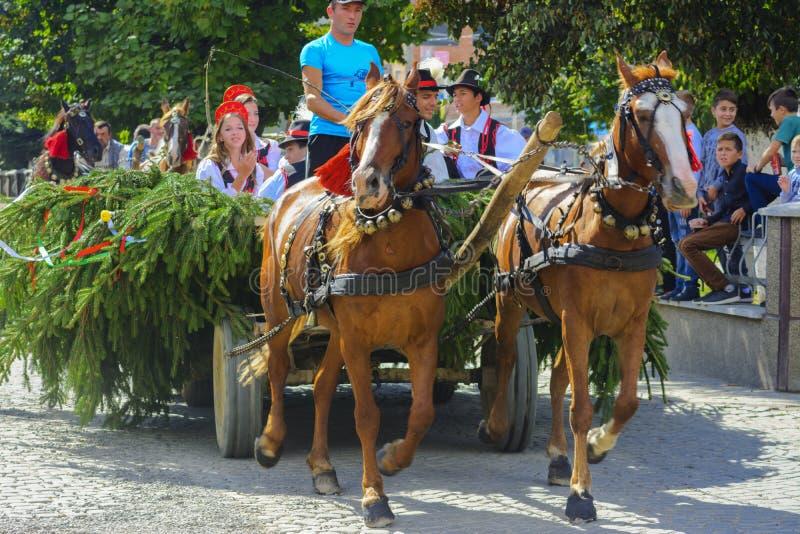 Celebración vestida del carnaval en el pueblo fotos de archivo