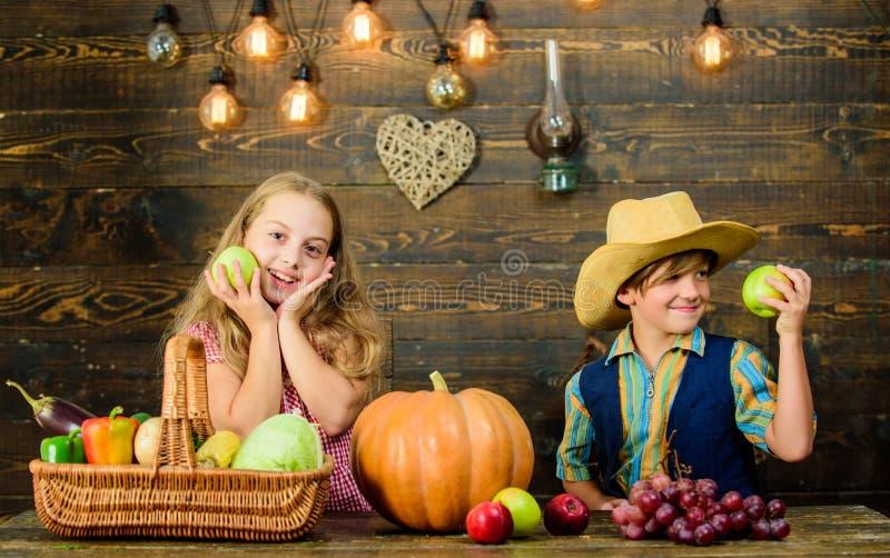 Celebrate harvest festival. Children presenting harvest vegetable wooden background. Kids girl boy fresh vegetables stock photo