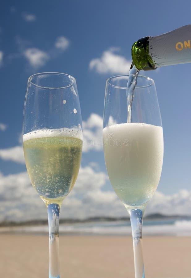 Download Celebration on the beach stock photo. Image of coastline - 143736