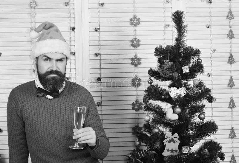 Celebration and New Year mood concept. Man with beard. And bow tie holds glass of champagne. Santa with tricky face in festive room. Guy sits next to Christmas royalty free stock photos