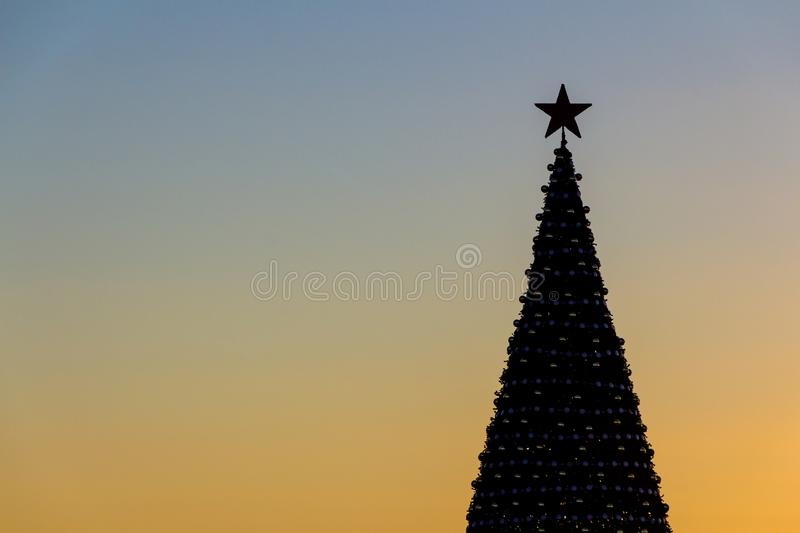 Silhouette of a New Year tree against a background of the evening sunny sky. Celebratory background. royalty free stock images