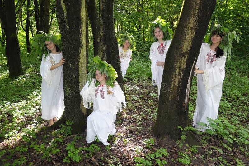 Celebre un día de fiesta pagano antiguo del pleno verano fotografía de archivo