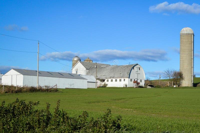 Celeiro branco com silo no campo de Wisconsin imagem de stock royalty free