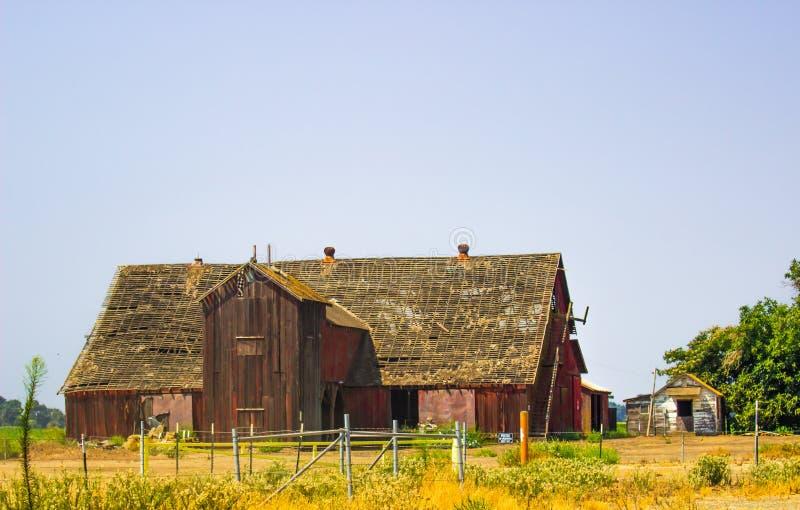 Celeiro & construções de madeira do vintage na ruína fotografia de stock