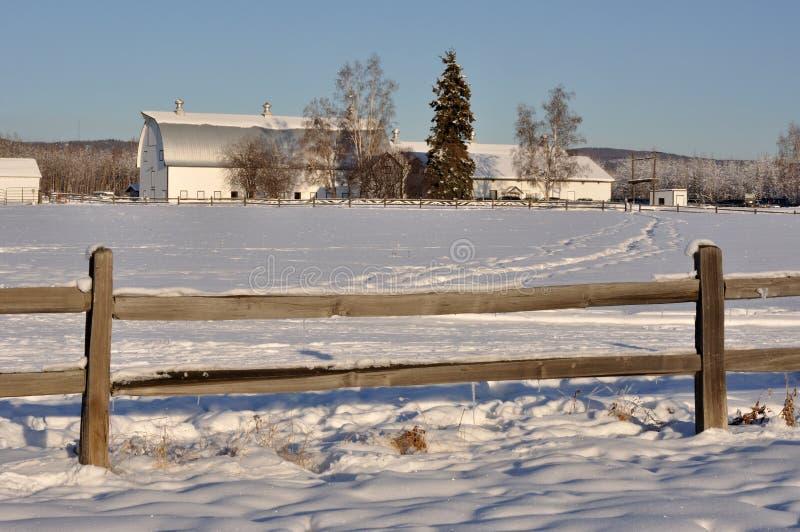 Celeiro de leiteria histórico no campo da desnatadeira no inverno fotos de stock royalty free