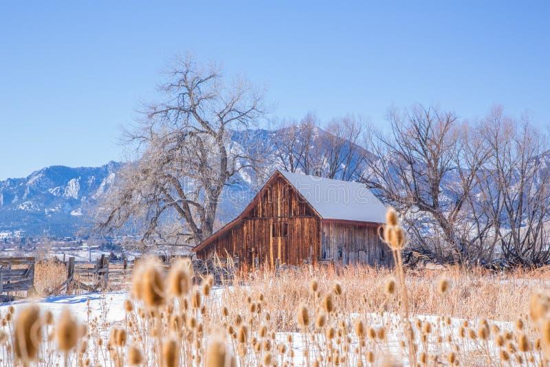 Celeiro de madeira em um espaço aberto coberto de neve imagem de stock