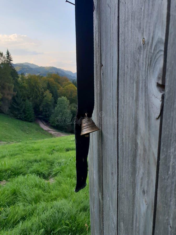 Celeiro de madeira protegido cão imagem de stock