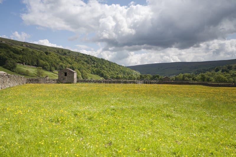 Celeiro de Swaledale, parque nacional dos Dales de Yorkshire imagem de stock royalty free