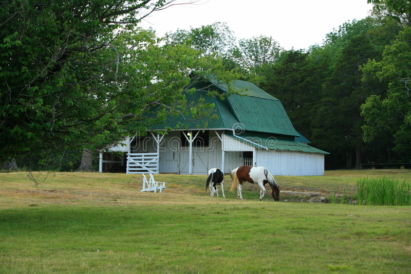 Celeiro e cavalos imagem de stock
