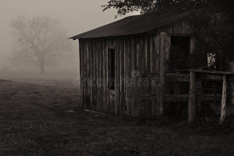 Celeiro na névoa fotografia de stock royalty free