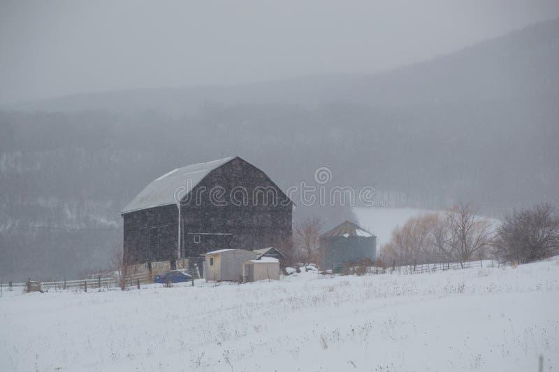 Celeiro preto velho nevado na tempestade de neve com montes imagem de stock royalty free