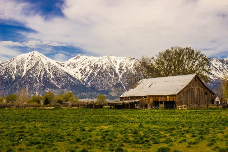 Celeiro rústico velho na base de montanhas cobertos de neve imagem de stock royalty free