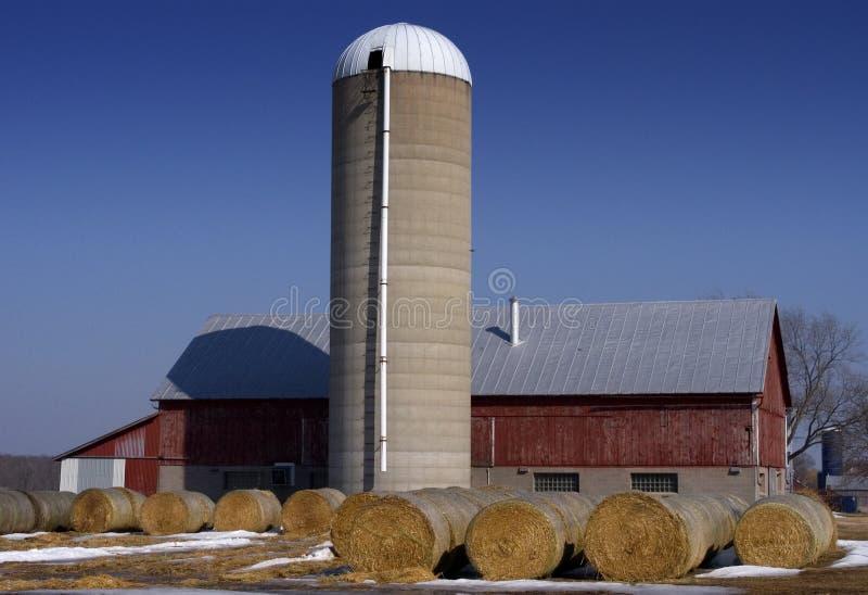 Celeiro, silo, e feno - cena da exploração agrícola de leiteria imagens de stock