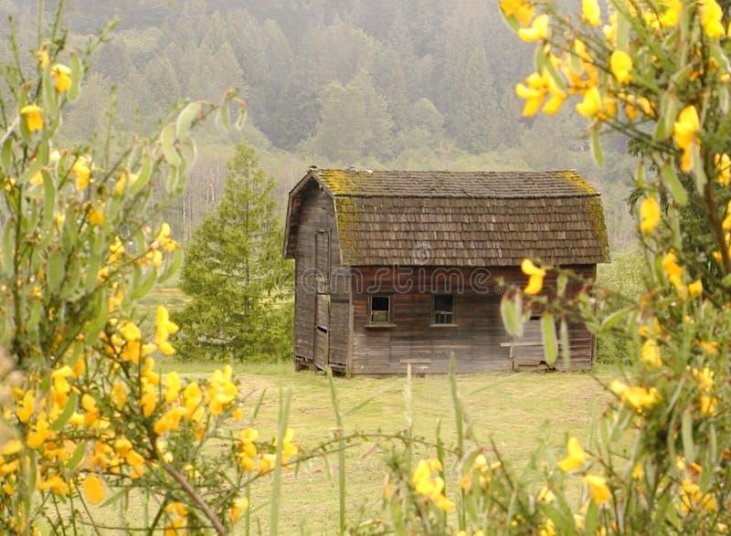 Download Celeiro velho imagem de stock. Imagem de edifícios, fazendas - 64569