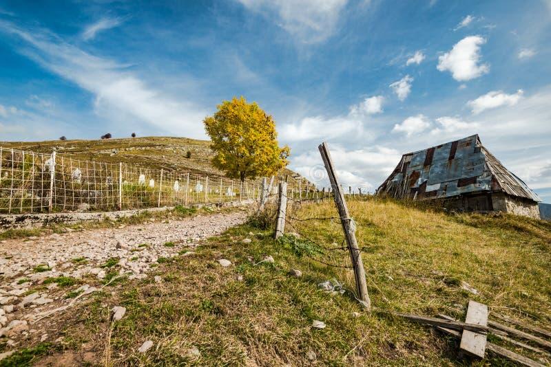 Celeiro velho em Lukomir, última vila em Bósnia foto de stock