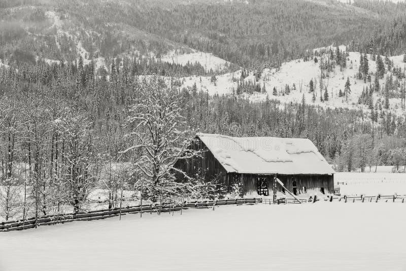 Celeiro velho no pasto nevado imagem de stock royalty free