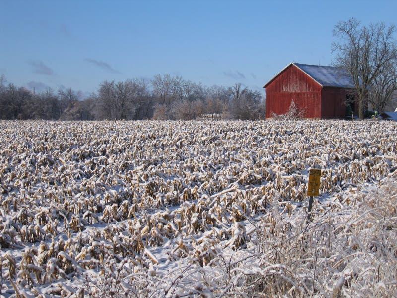 Celeiro vermelho no campo nevado imagens de stock