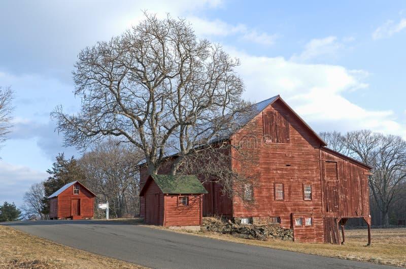 Celeiros e árvore vermelhos velhos na estrada secundária imagens de stock royalty free