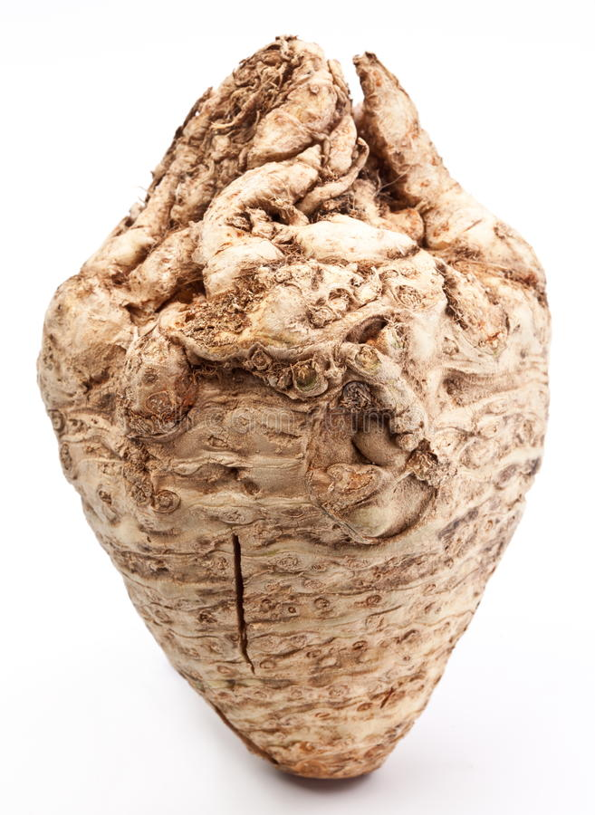Celeriac. Looks like a heart isolated on a white background stock images