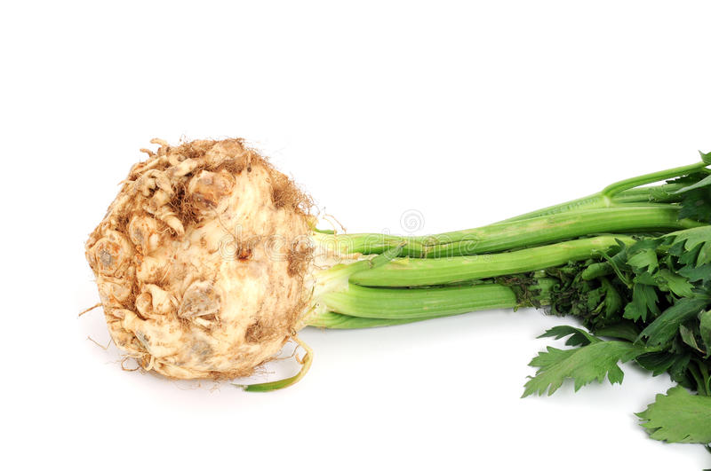 Celeriac. In front of a white background stock photos