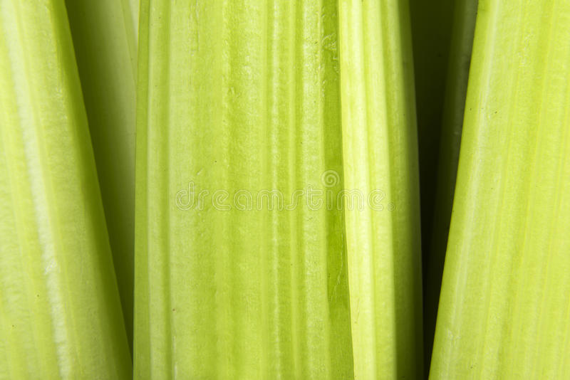 Download Celery stock photo. Image of healthy, root, bunch, plant - 29265906