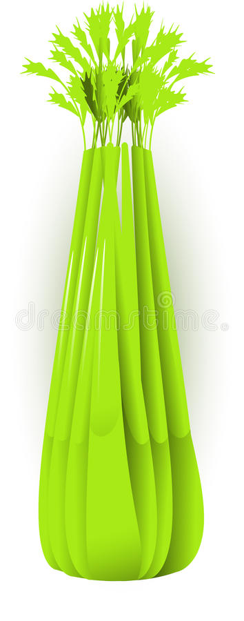 Celery. Vector image of celery, isolated stock illustration