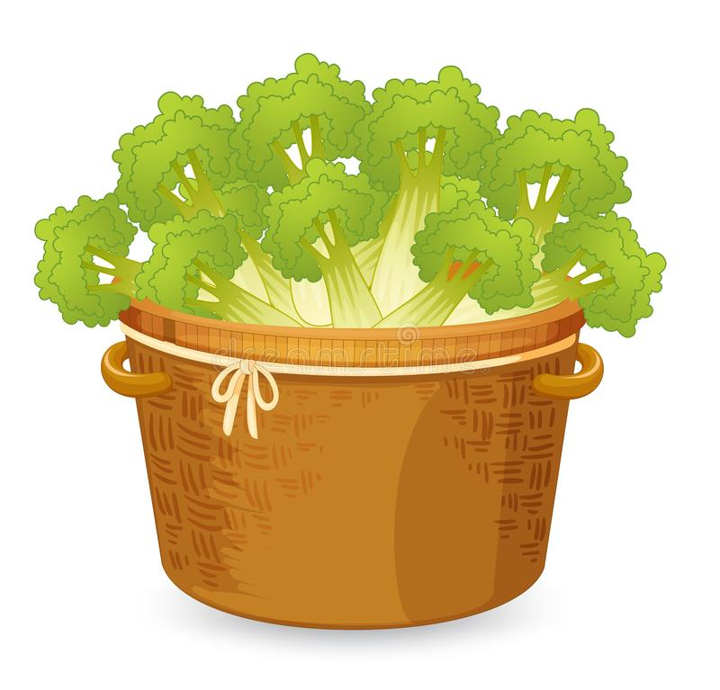 Celery in basket weave. Illustration stock illustration