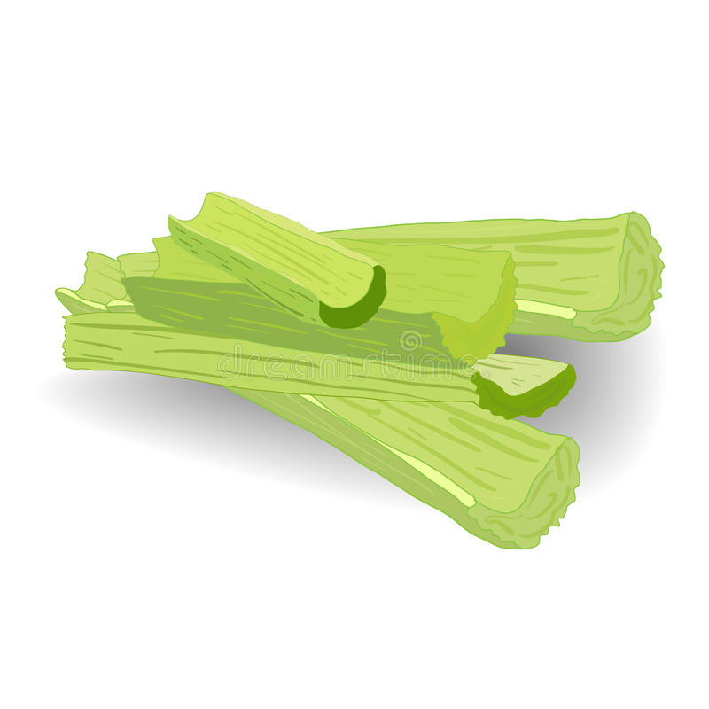 Celery. Celery. On a white background royalty free illustration