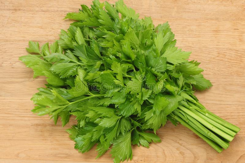 celery leaves on wooden table. Healthy food royalty free stock photography