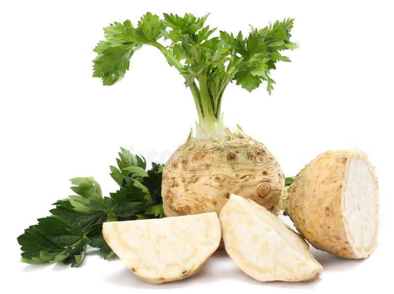 Celery root with leaf isolated on white background. Celery isolated on white. Healthy food stock photos