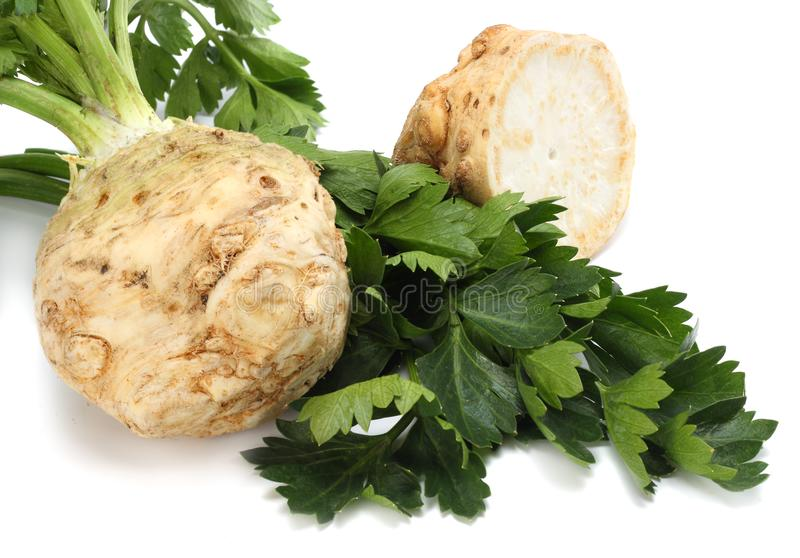 Celery root with leaf isolated on white background. Celery isolated on white. Healthy food stock images