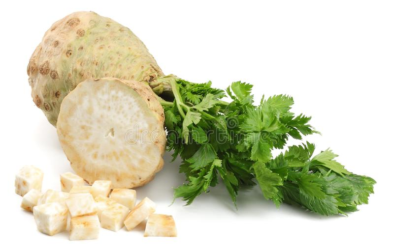 Celery root with leaf isolated on white background. Celery isolated on white. Healthy food royalty free stock photo
