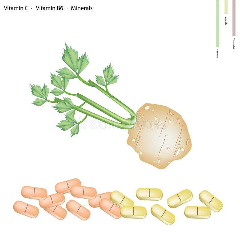 Celery Root with Vitamin C, B6 and Minerals. Healthcare Concept, Illustration of Root of Celery with Vitamin C, Vitamin B6 and Minerals Tablet, Essential royalty free illustration