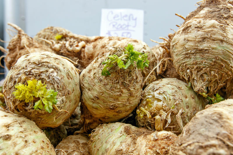 Celery roots. For sale at a farmer& x27;s market royalty free stock images