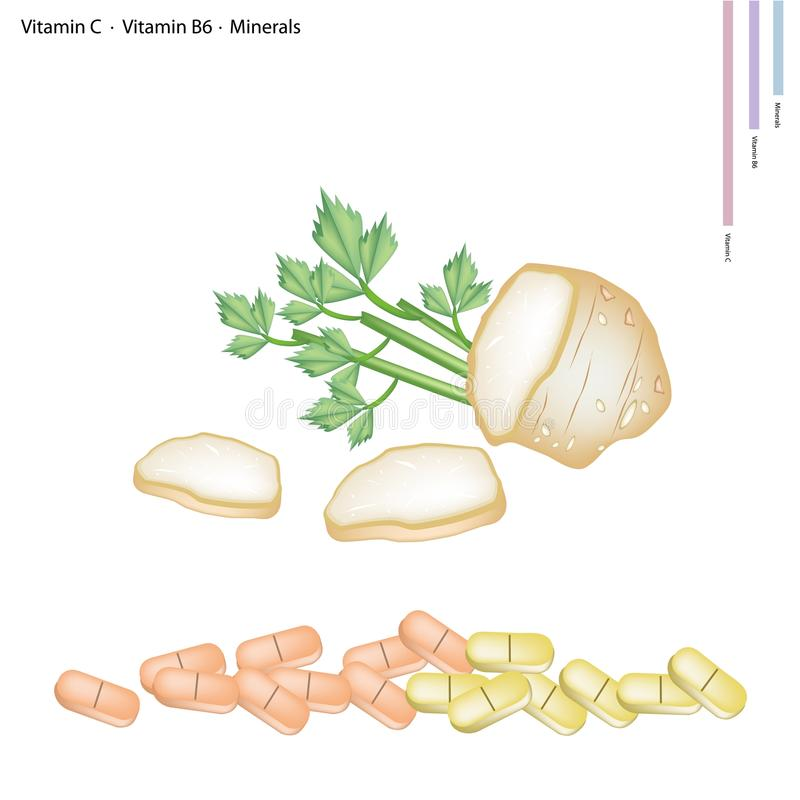 Celery Roots with Vitamin C, B6 and Minerals. Healthcare Concept, Illustration of Roots of Celery with Vitamin C, Vitamin B6 and Minerals Tablet, Essential royalty free illustration