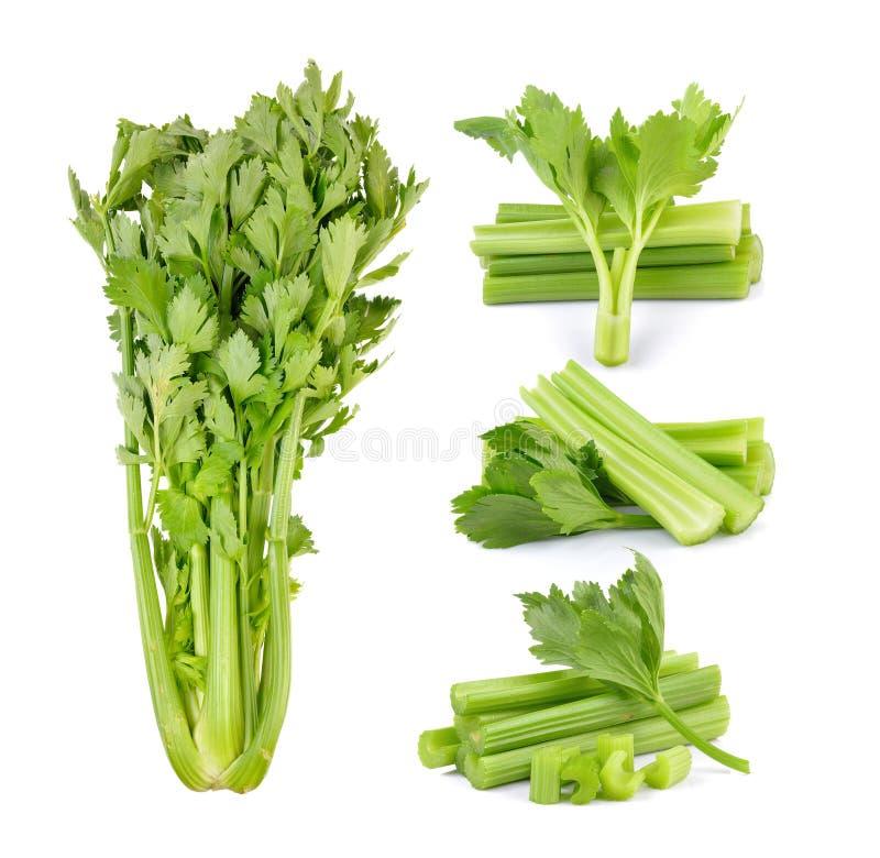 Celery on white background stock photography