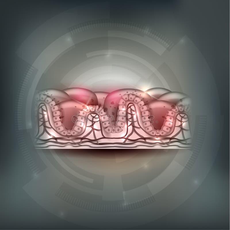 Celiac disease royalty free illustration