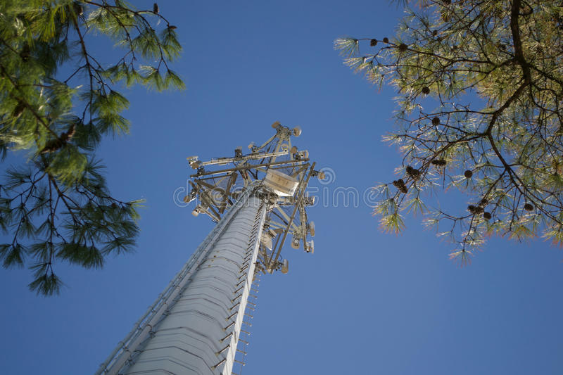 Cell Phone Tower Reaching To The Sky Stock Photo