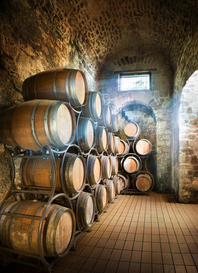 Cellar With Barrels. For Storage Of Wine royalty free stock photos