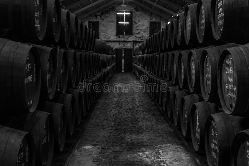 Celler de vin avec de vieux barils image stock