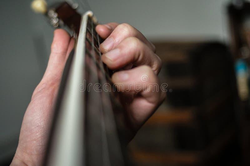 cellist immagine stock libera da diritti