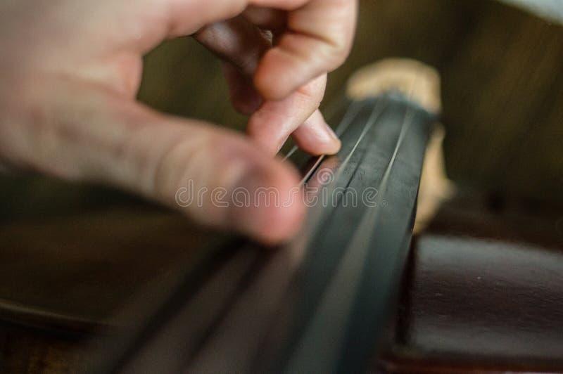 cellist fotografia stock libera da diritti