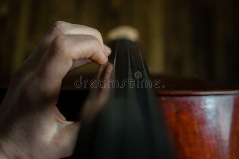 cellist immagini stock
