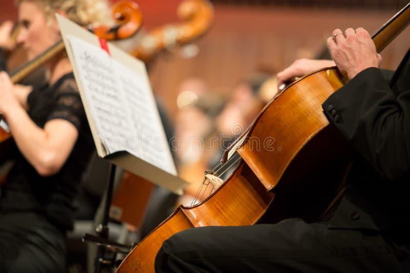 Cellist, der im Orchester spielt lizenzfreie stockfotografie