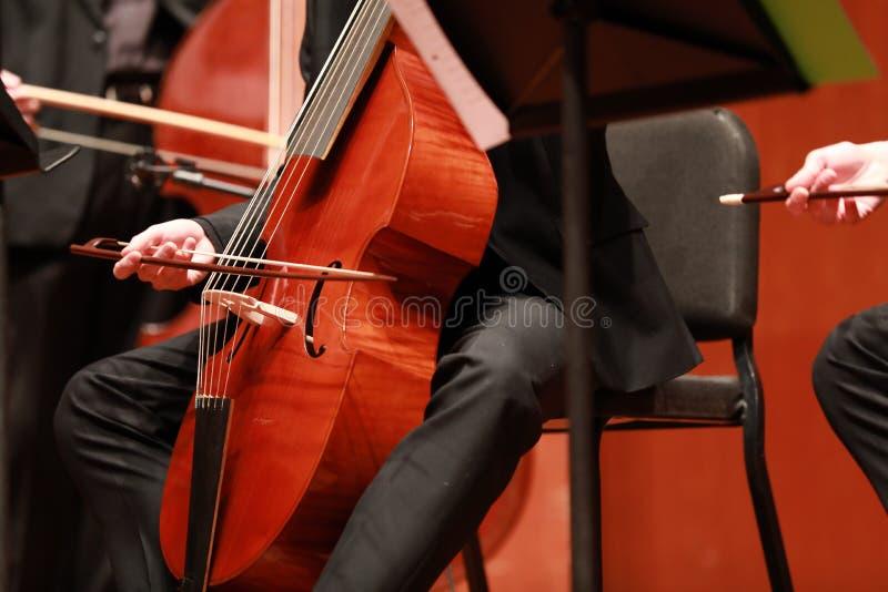 Cellist met klassiek muzikaal instrument in duisternis Componist, muziek Portret die van cellist klassieke muziek op cello op zwa stock foto's