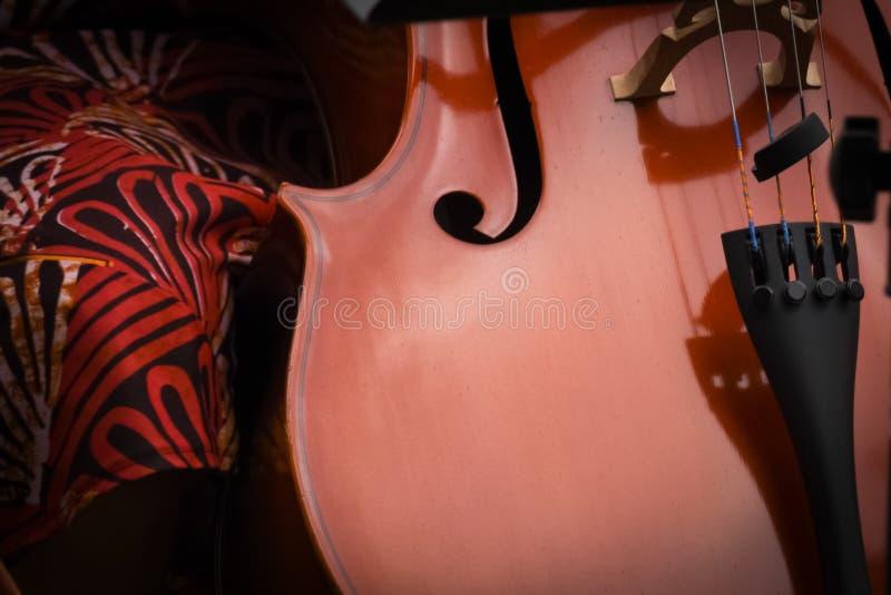 Cellist mit klassischem Musikinstrument in der Dunkelheit stockbilder