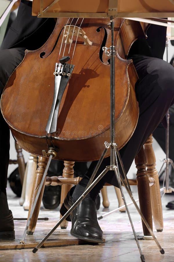 Cellistman på en klassisk musikkonsert i staden av naples royaltyfri foto