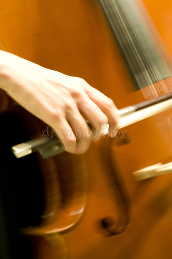 Download Cello stock photo. Image of music, composer, philharmonic - 10127598