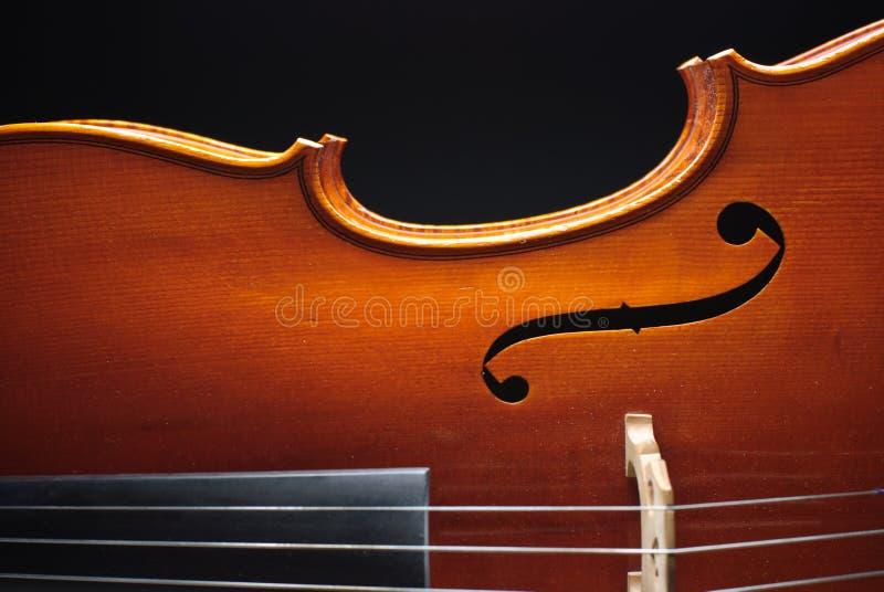 Download Cello stock photo. Image of concert, classical, cello - 12539880