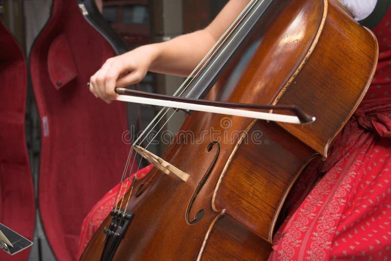 Cello royalty-vrije stock foto's